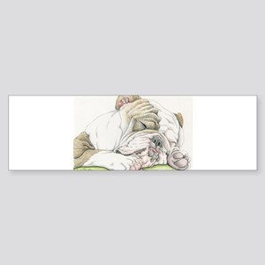 Sleepy English Bulldog Bumper Sticker